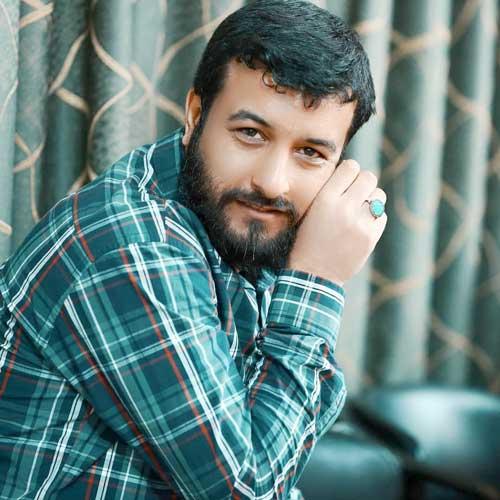 دانلود مداحی آروم آروم پر میگیرم تو خیالم تا کربلا سید امیر حسینی